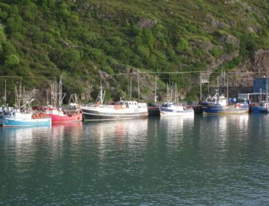St. John's lovely harbor