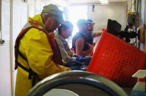 Glenn Rountree (left) and I sorting the animals in our buckets