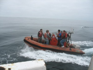 Crewmembers practice suction cup tagging of leatherbacks from a Rigid Hull Inflatable Boat (RHIB).