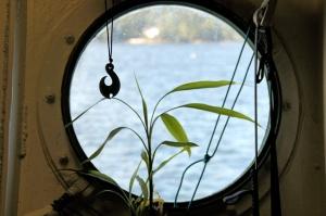 A porthole window offers a majestic view.
