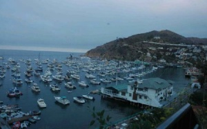 Harbor at Avalon, Santa Catalina Island, California. The former Wrigley house is the one that sits highest on the mountain in the photo.