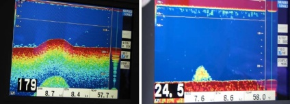 One of these scans shows a school of fish and the other shows a mound on the sea floor.  Can you guess which is which? (Answer: the scan on the left is a mound on the sea floor and the scan on the right is a school of fish.)