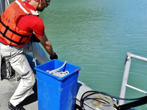 TAS Rob Ulmer retrieving sea floor sample in Behm Canal