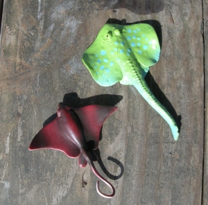 Which of the toy models is a ray and which is a skate?  Skates have dorsal fins located near the ends of their tails