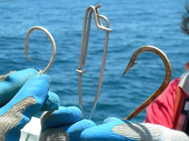 The J-hook and somewhat smaller circle hook are used for mako and thresher shark lines.