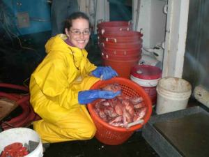 TAS Jill Carpenter with a basket of redfish caught with a mid-water trawl for the Atlantic Herring Hydroacoustic Survey
