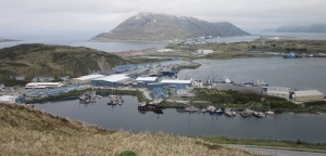 Dutch Harbor with Mt. Ballyhoo in the background.