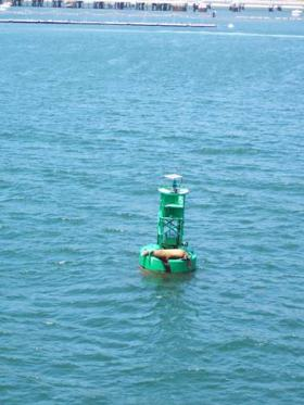 California sea lions catch a nap on a buoy marker in San Diego Harbor as the DAVID STARR JORDAN leaves port for the second leg of the Juvenile Shark Abundance Survey.