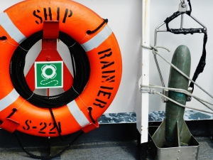 "A lifebuoy and the ""fish"""