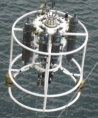 There are five grey water sample bottles on this CTD.