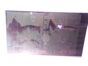 This is a picture of a sonar image taken on the boat during shoreline survey. The spike on the image represents a rock.