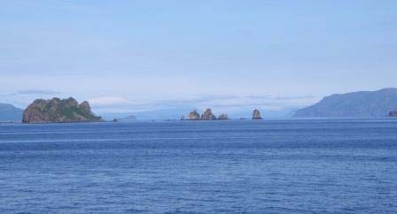 Here is a scenic view of part of the Shumagin Islands.  The Haystacks formation is in the center of the photograph.