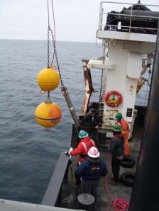 Deck crew of the OSCAR DYSON retrieving sensors from a buoy.