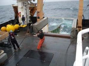 The fishing and deck crew of the OSCAR DYSON release the net for a trawl sample.