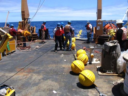 Attaching glass balls (they are located inside the yellow plastic housings which protect them from chipping), which are at the very end of the 13,000 feet of cable just above the acoustic release, which in turn attaches to the anchor.  These hollow glass balls can withstand pressures in excess of 5,300 lb/sqin.