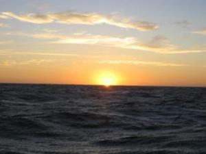 This picture is taken right off the fantail of the ALBATROSS IV.  It is a gorgeous view of the sunrise from the back deck of the ship.