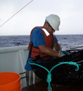 Teacher at Sea Chris Monsour sorts through a trap that was brought up off the Maro Reef.