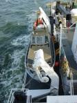 survey boat on TJ