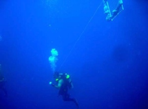 NOAA diver Brad Teer ascending to the surface.