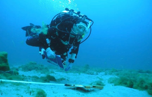 NOAA Diver Roldan Muñoz working with a transect line.
