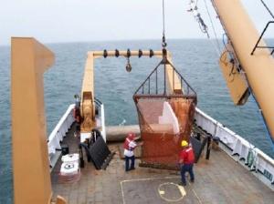 Crew of the ALBATROSS prepare the dredge.