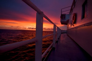 sunsetfinal