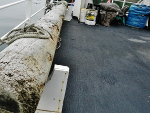 """This log, called a """"camel,"""" is used as a buffer alongside less-equipped docks to protect both the dock and the ship."""