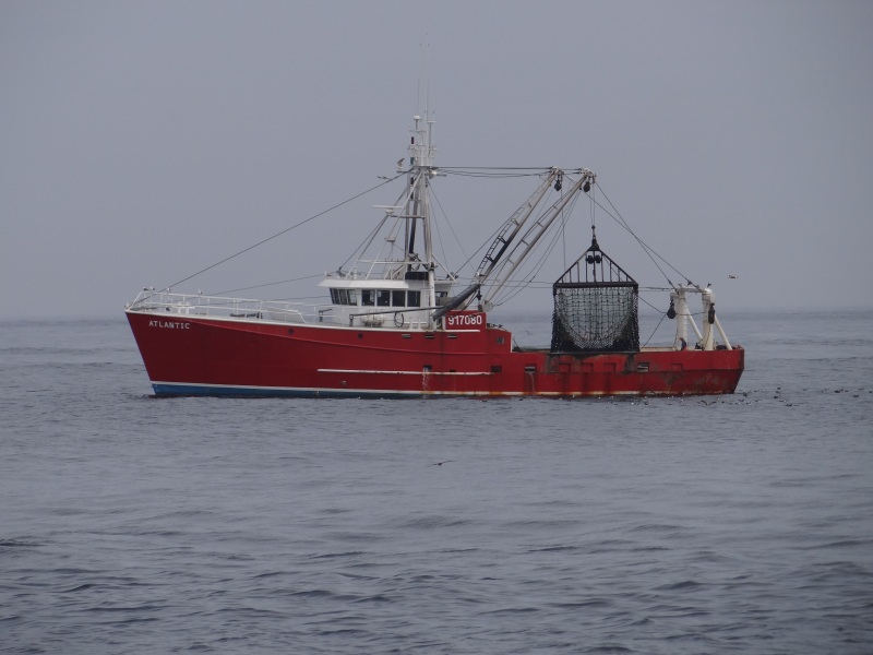 Commercial Scalloping Ship Atlantic