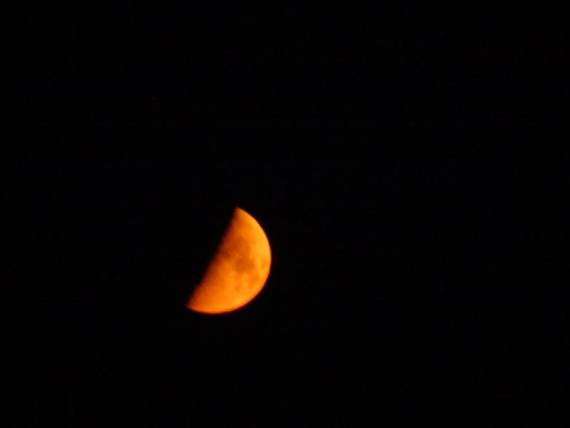 Up Close of the Orange Moon