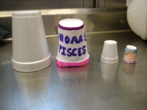 Styrofoams cups.  Before and after being sent down with the ROV.