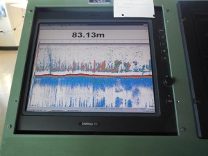 "This screen is showing the echogram from the EK 60 echosounder during a trawl at 83.13 meters.  The red line in the middle of the screen is the ocean floor.  The colorful spikes above the red line indicate ""backscatter"" that is characteristic of capelin, a small fish that pollock feed on."