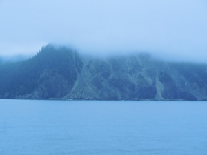 False Point on Kenai Peninsula (viewed this morning through the fog)