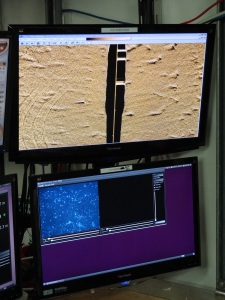 HabCam and Sonar View