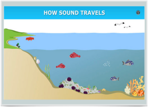 Click on this picture to see how sound travels from various ocean creatures through water. (Photo from sciencelearn.org)