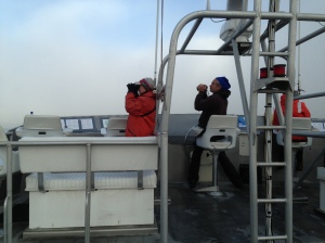 These are the ACCESS observers looking for marine mammals and sea birds.