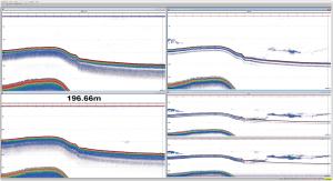 echogram for krill