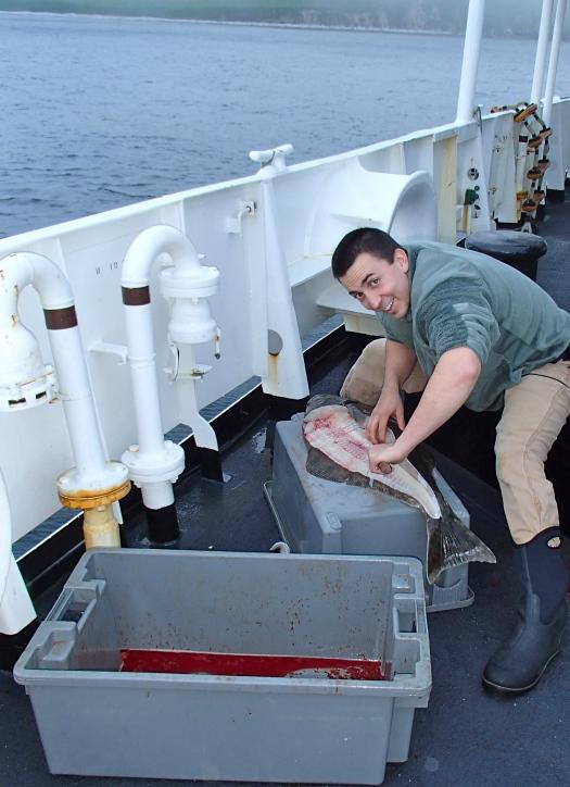 John Kidd (NOAA Officer) filleting my halibut