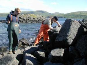 Survey Technician Matt Boles (right) locating tide gauge markers on Olga Island.