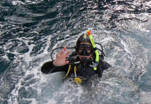 Diving in Tasmania