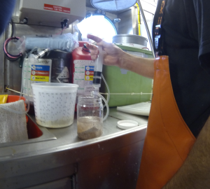 preserving krill