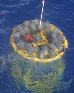 The CTD seen here is just under the water's surface.