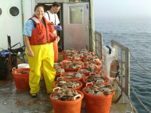 Virginia Shucking Scallops