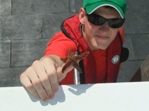 Volunteer Kevin Travis with a starfish that came up on a clip. Photo Credit: Claudia Friess