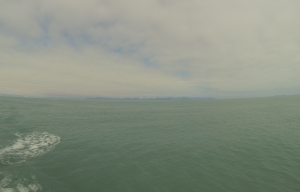The ocean with glacial runoff.