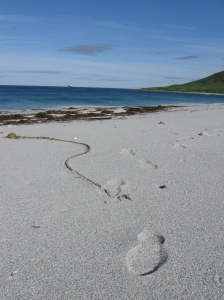 My footsteps on the beach at Chernabura Island.  It's crazy to think how few people have walked on this land.