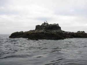 The tide station that the Rainier crew installed on Bird Island.