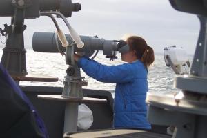 Scanning for marine mammals