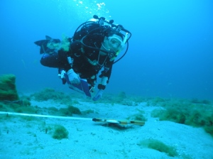 Diver Christine Addison conducts a visual transect survey with a clipboard and meter tape along the ocean floor.