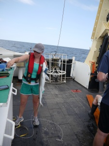 I handle an Atlantic Sharpnose in one of my last hauls aboard the ship. Photo Credit: Claudia Friess