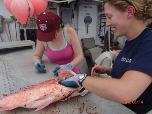 During some free time away from her NOAA Corps duties, ENS Rachel Pryor would sometimes help the day shift. Here she teaches Micayla how to remove otoliths.